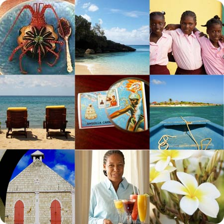 Anguilla inspiration on Flee Fly Flown
