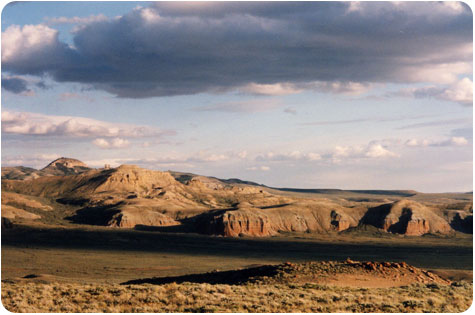 Horsepacking in Wyoming on Flee Fly Flown
