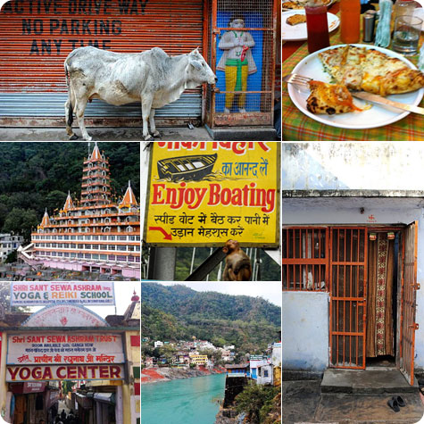 A visit to Rishikesh in India. on Flee Fly Flown