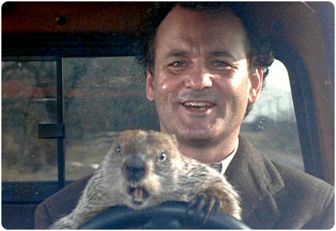 Groundhog Day the Movie   Bill Murray